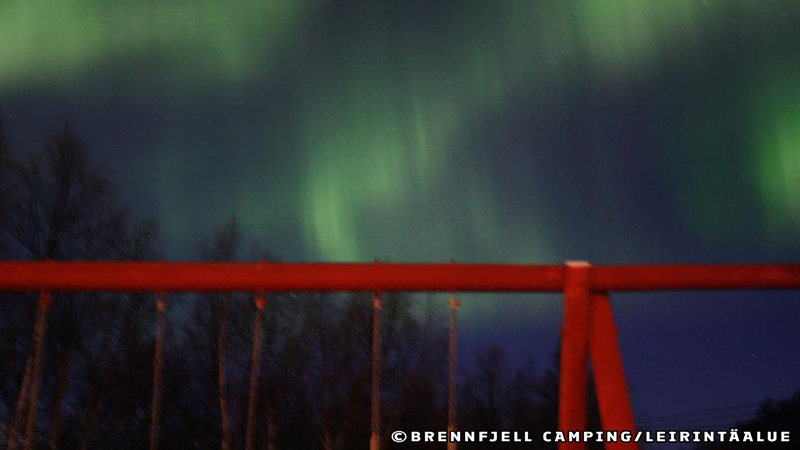 Brennfjell Camping - Northern Lights